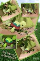 Schildkröte Charly