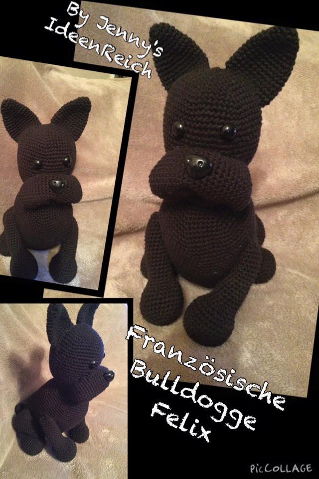Französische Bulldogge Fiona