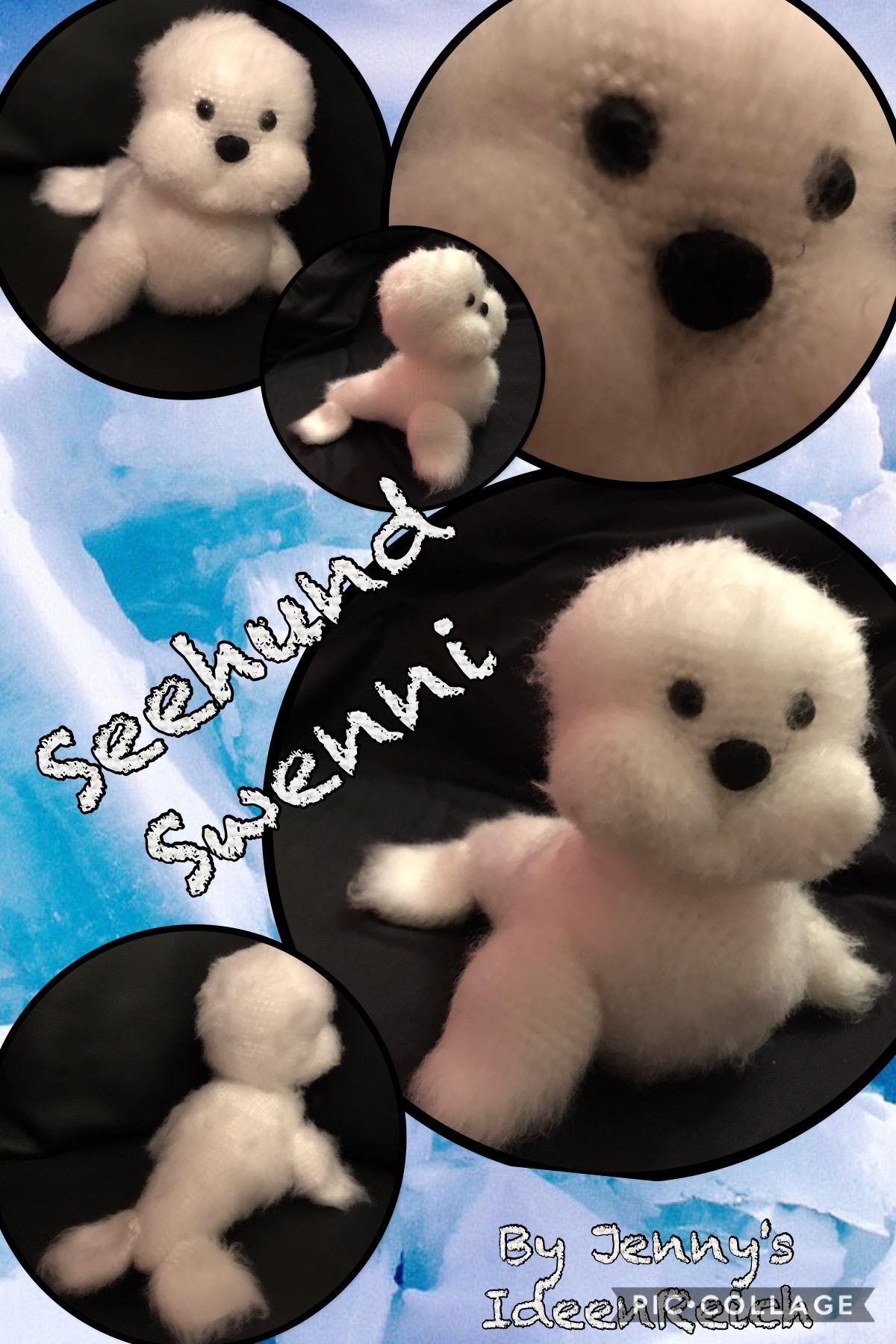 Seehund Swenni